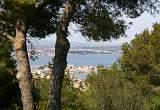 Languedoc Landscapes